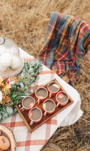 15-offer-some-plaid-blankets-and-throws-that-match-the-table-decor-for-a-cozy-fall-like-look